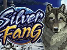 Игровой автомат Silver Fang играть онлайн на реальные деньги